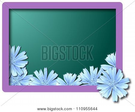 flower background, greeting card illustration