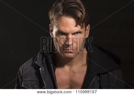 Intense Predator Eyes