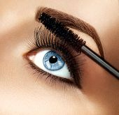 Mascara applying closeup, long lashes. Mascara brush. Eyelashes extensions. Make-up for blue eyes. Eye make up apply poster