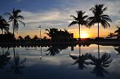 Palm Trees reflecting in the swimming pool during sunset in paradise poster
