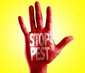 Stop Pest written on hand with yellow background poster
