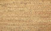 Light brown cork wood panel - background poster