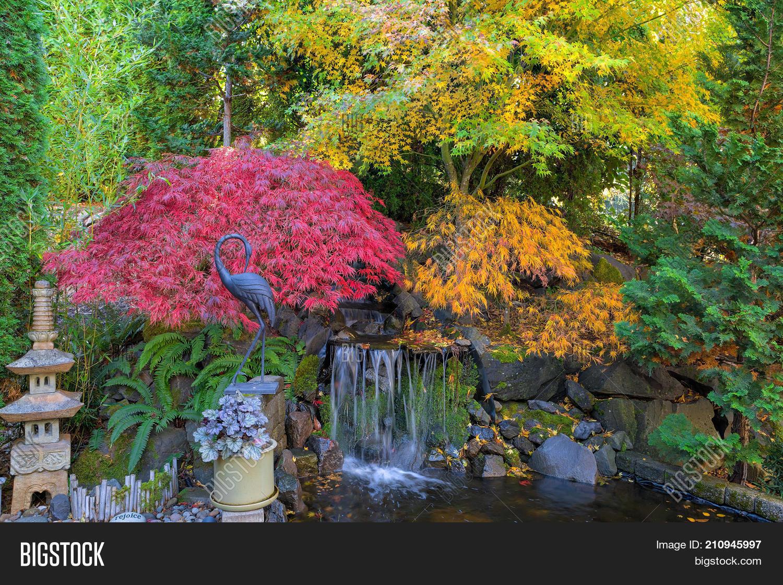 Image of: Imagen Y Foto Home Garden Prueba Gratis Bigstock