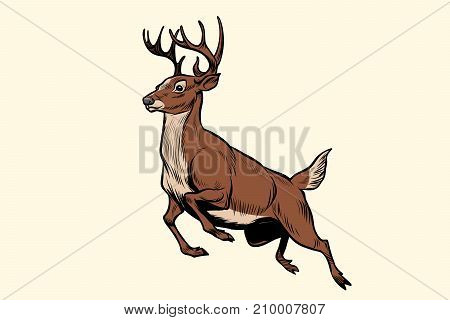 running deer jumps. Pop art retro vector illustration
