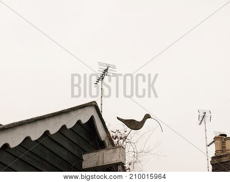 Interesting House Bird Ornament Of Snipe On Roof