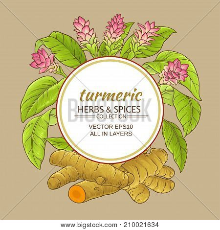 turmeric plant vector frame on color background