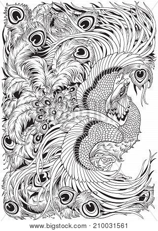 Chinese phoenix or feng huang mythological bird. Black and white vector illustration