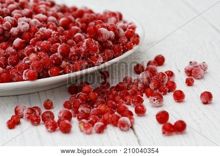 Closeup Of Frozen Redcurrants On White Ceramic Plate On White Painted Table. Spilled Currants.