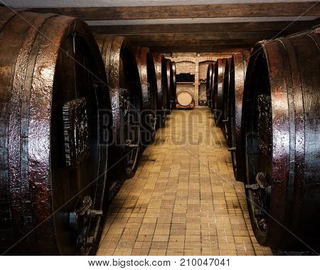 Wine cellar with old wooden barrels of wine