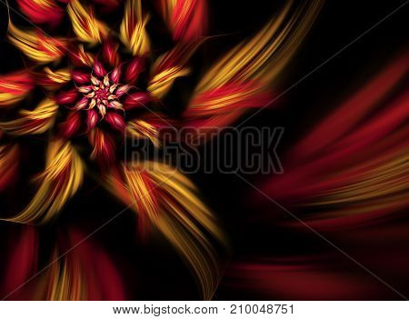 abstract fractal background a computer-generated illustration spiral flower
