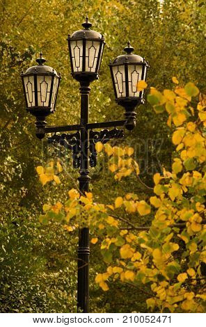 cast-iron street lamp in an autumn park among trees