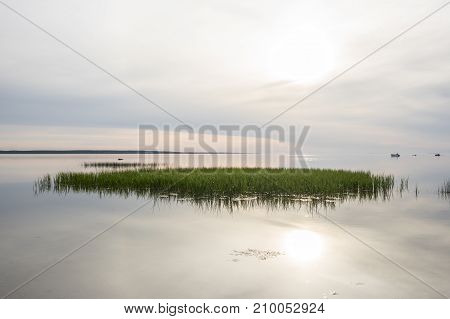 Evening sunlight on coast pink clouds blue sky reflection on the water. Beach in summer. Seaside natural environment. Shore in Kesselaid a small island in Estonia. Nature Reserve in National Park in Nordic countries Europe
