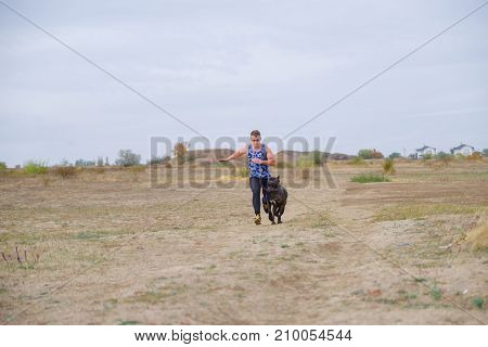 A big dark pitbull walking with owner outdoors. Cute dog standing near the man on the nature background. Copy space. Animal concept.