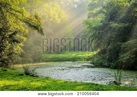 Beautiful summer morning landscape. Pond with sunshine in the urban park.