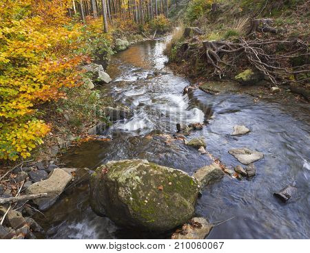 Long Exposure Magic Forest Stream Creek In Autumn With Stones Moss Orange Trees And Fallen Leaves An