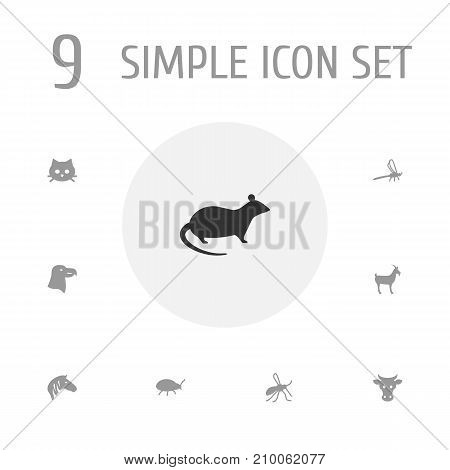 Collection Of Livestock, Pussy, Gnat And Other Elements.  Set Of 9 Zoology Icons Set.