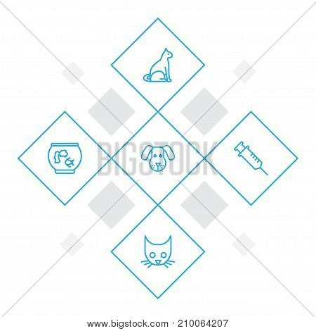 Collection Of Dog, Vaccination, Cat And Other Elements.  Set Of 5 Pets Outline Icons Set.