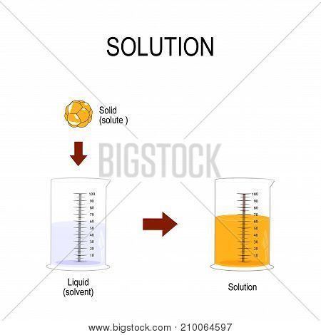 solution is a homogeneous mixture. Substance dissolved in another substance. Solid in liquid. Solubility chemistry. Vector illustration