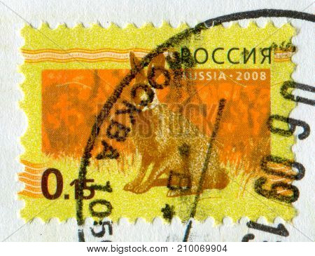 GOMEL, BELARUS, 13 OCTOBER 2017, Stamp printed in Russia shows image of the Hare, circa 2009.
