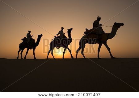 Rajasthan travel background - Three indian cameleers (camel drivers) with camels silhouettes in dunes of Thar desert on sunset. Jaisalmer, Rajasthan, India