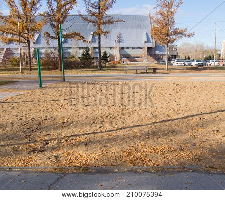Fallen Leaves On The Sand Playground For Volleyball In The Park