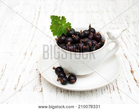 Cup With Black Currant