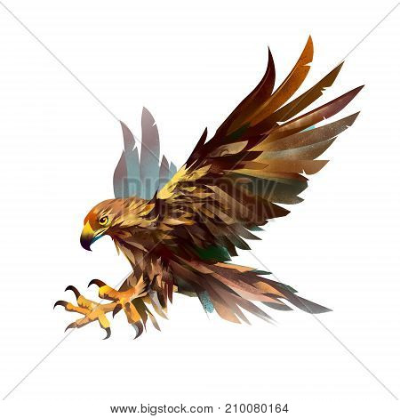 art isolated bird. Sketch of a flying eagle.