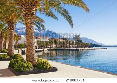 Embankment of Tivat town with Lovcen mountain in the background. Bay of Kotor(Adriatic Sea), Montenegro, winter