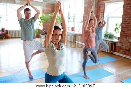 fitness, meditation and healthy lifestyle concept - group of people doing yoga in tree pose at studio