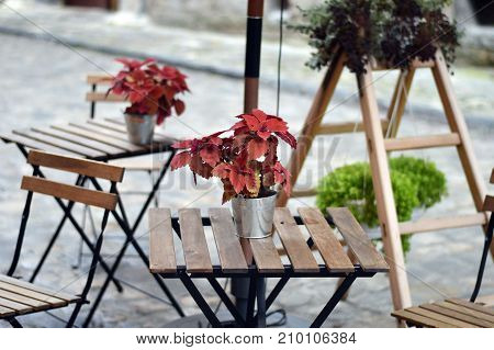 Cozy interior of outdoor cafe terrace in Lviv. Wooden table with vase decoration. Focus on the vase