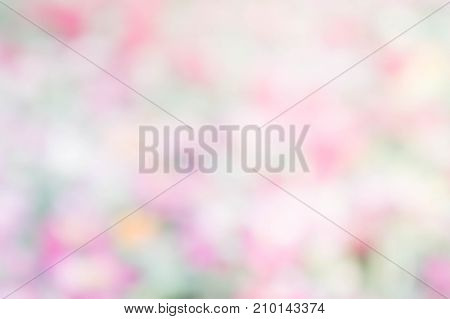 abstract nature colorful blur background color pink green yellow white mix for bacground