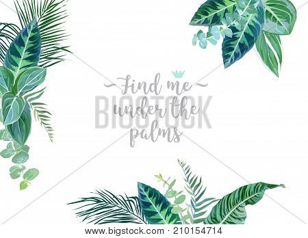 Tropical borders arranged from exotic emerald leaves vector design frame. Paradise plants, eucalyptus greenery and palm card. Stylish fashion banner. All leaves are not cut. Isolated and editable