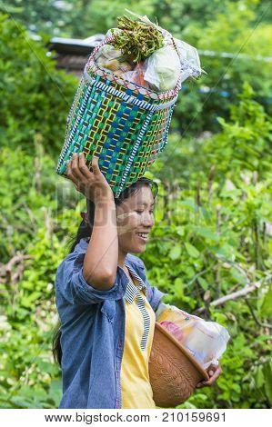 SHAN STATE MYANMAR - SEP 06: Portrait of Burmese farmer in Shan state Myanmar on September 06 2017 agriculture is the main industry in Myanmar