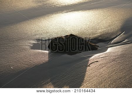 The beach is wet sand under the dazzling bright sunlight. Graphics of nature and the surf of the ocean