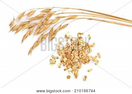 oat spike with oat flakes isolated on white background.