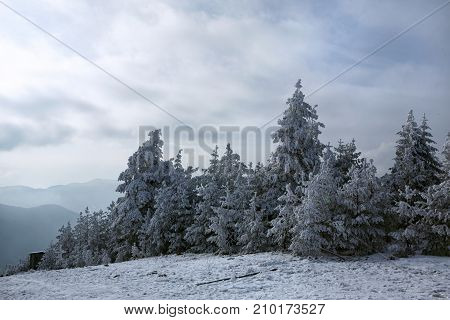Beautiful winter mountains landscape in sunny morning background