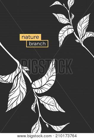 Template with silhouette of branches. Vector floral illustration. Realistic leaves on white background. Design shape. Copy space. Eps.10