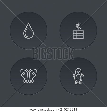 Collection Of Water Drop, Penguin, Sun Power And Other Elements.  Set Of 4 Bio Outline Icons Set.