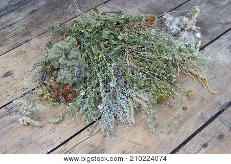 Multi-colored dried herbs against the background of boards