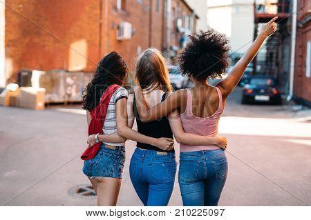 Multi ethnic female friends walking on street, back view