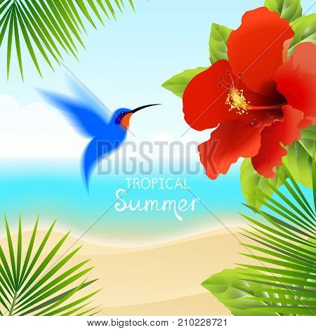 tropical background with hummingbirds and red hibiscus