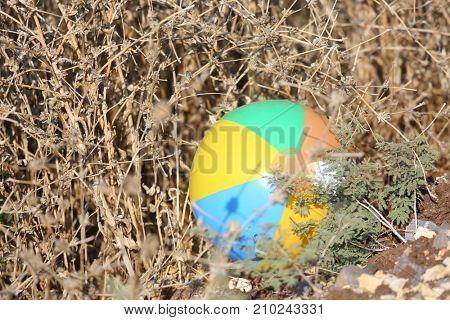 child's ball lost in a dry bush