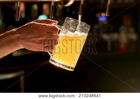 Close up bartender hand pouring lager beer. Barman hand at beer tap pouring fresh lager beer.