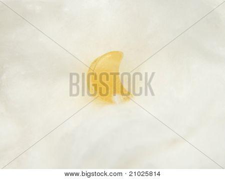 Orange Calcite Mineral On Cotton
