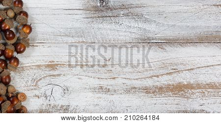 Autumn acorns in flay lay view on rustic white wood with ample copy space
