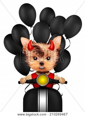 Funny cartoon animal Devil sit in black on a bike with balloon. Halloween and Evil concept. Realistic 3D illustration.