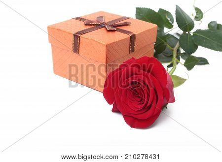 Gift boxes with bow and rose isolated on white background. Decoration
