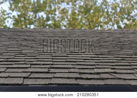 a black layered rooftop and the background trees