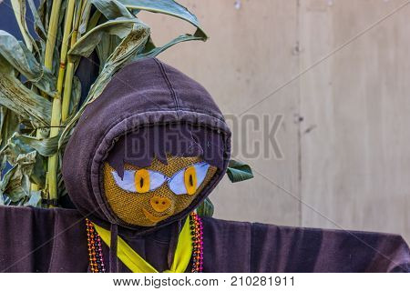 Close Up Of Holiday Scarecrow With Hooded Sweatshirt