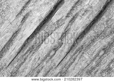 Old wood wall surface. For design View from the top